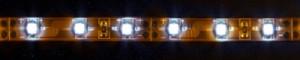 LS604, светодиодная лента влагозащищенная, цвет свечения: холодный белый, 5m, 4.8W/m