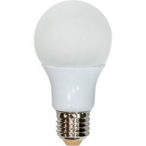 LB-91, 2700K  20LED(7W) 230V E27, светодиодная лампа A60