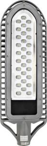 SP2550, светильник уличный светодиодный, 30LED/1W  AC90-265V серебро (IP65)