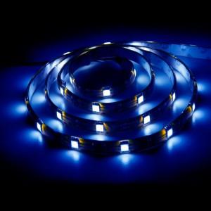 LS607, светодиодная лента влагозащищенная, цвет свечения: синий, 5m, 7.2W/m
